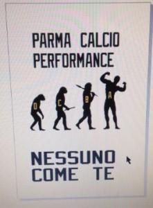 parma performance